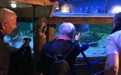 Geslaagde weekenduitjes Sea Life en Polderzoom